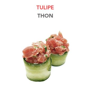 Tulipe Thon - 1 Pce